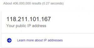 google direct answer ip address